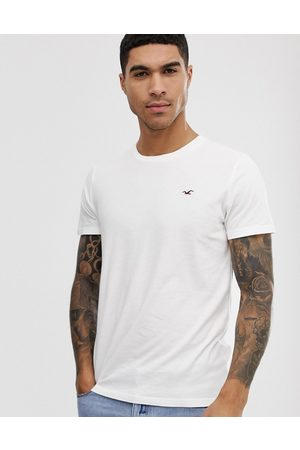 Hollister Crew neck seagull logo t-shirt in white