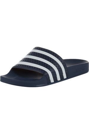 adidas Muži Pantofle - Pantofle 'Adilette