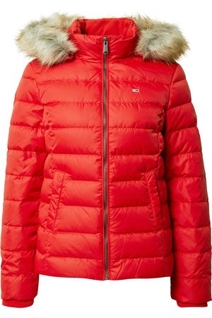 Tommy Jeans Zimní bunda