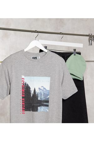 Reclaimed Vintage Inspired t-shirt with scenic print in grey