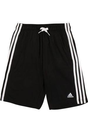 adidas Chlapci Kalhoty - Sportovní kalhoty