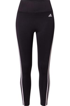 adidas Ženy Kalhoty - Sportovní kalhoty
