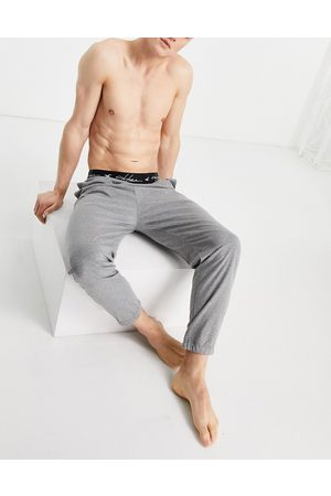 Hollister Lounge jogger in grey with contrasting logo waistband