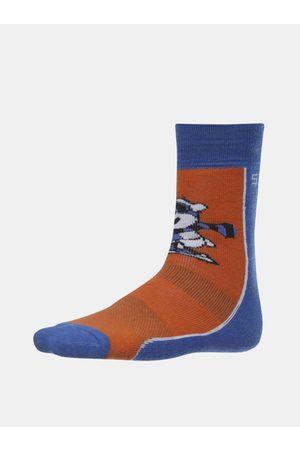 sam 73 Modro-hnědé klučičí ponožky Matanuska